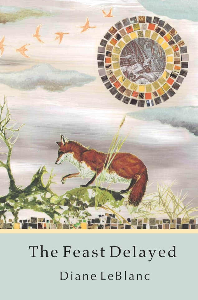 Collage of fox on green grass under mosaic sun.